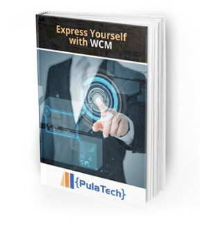 wcm-ebook-imag2
